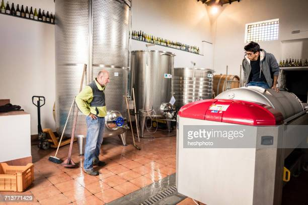 young man stepping on harvested grapes in vineyard vat - heshphoto stock pictures, royalty-free photos & images