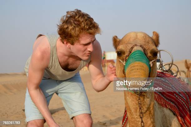 Young Man Touching Camel At Desert