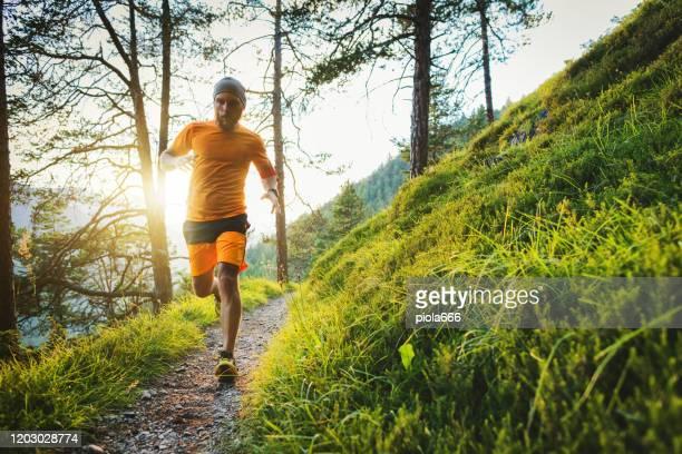 アルプスの夏の日没時に、森の中を走る若い男の道 - クロスカントリー競技 ストックフォトと画像