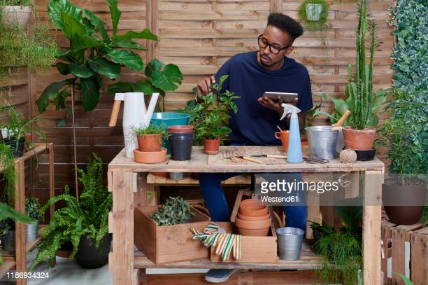 young man using digital tablet on his terrace while gardening - tutorial stock pictures, royalty-free photos & images