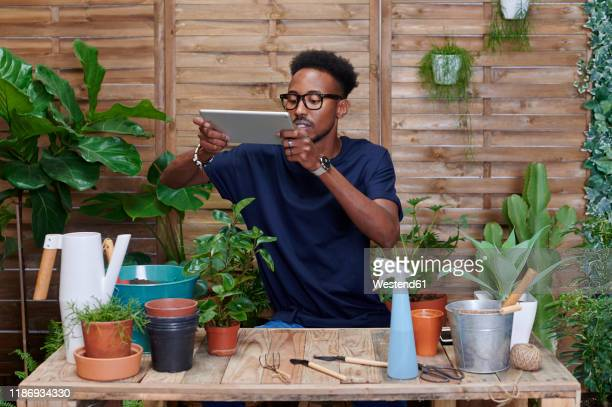 young man using digital tablet on his terrace while gardening - green thumb stock pictures, royalty-free photos & images