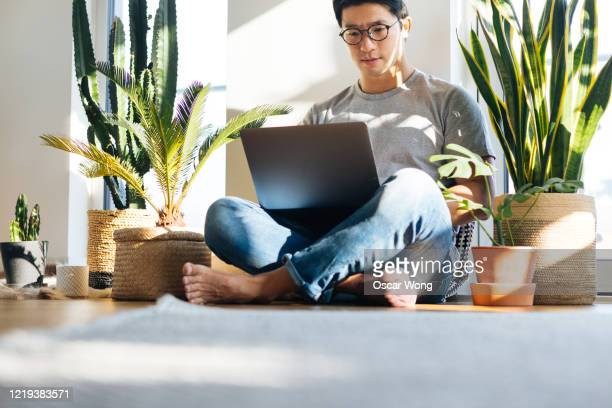 young man using laptop at home with plants - computer stock pictures, royalty-free photos & images