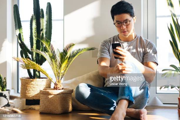 young man using smartphone at home with plants - men stock pictures, royalty-free photos & images