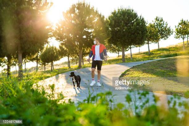 young man walking his  american staffordshire terrier wearing a protective mask - one animal stock pictures, royalty-free photos & images