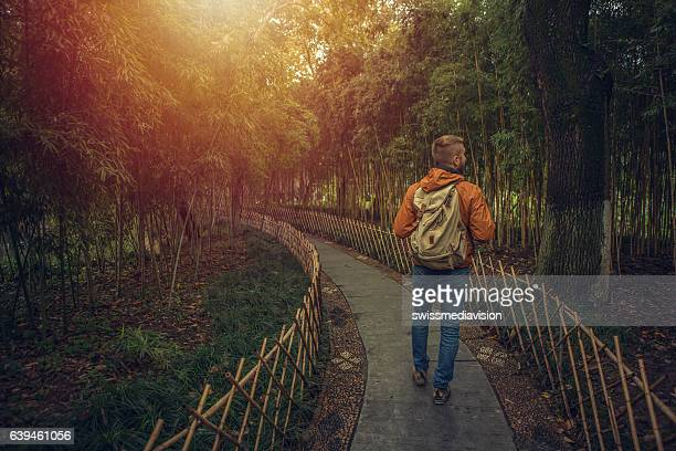 Young man walking in a bamboo grove