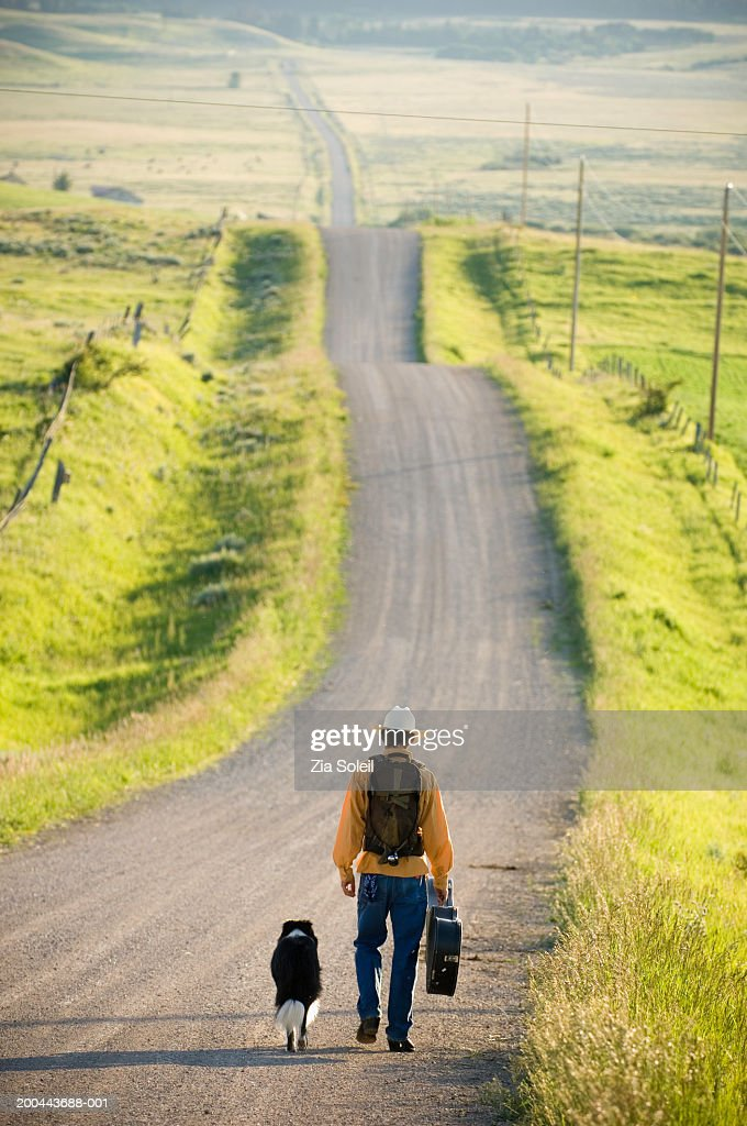 Young man walking with dog down rural road, rear view : Stock Photo