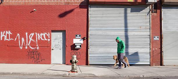 Young man walks dog