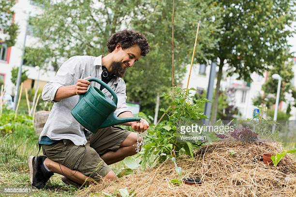 Young man watering plants