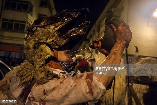 A young man with a skull baby animal came during the carnival parade in Navarra Alsasua Alsasua The momotxorro is a character of unknown origin...