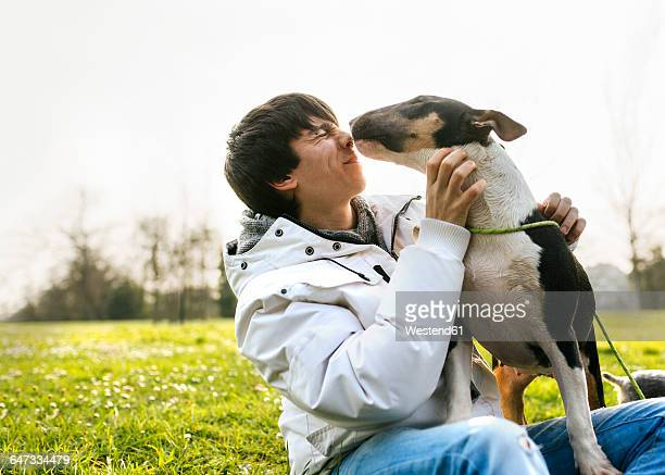 young man with his bull terrier on a meadow - bull terrier stock photos and pictures