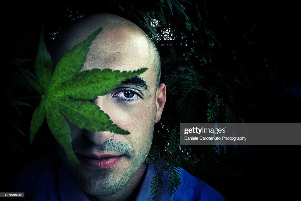 Young man with leaf : Stock Photo