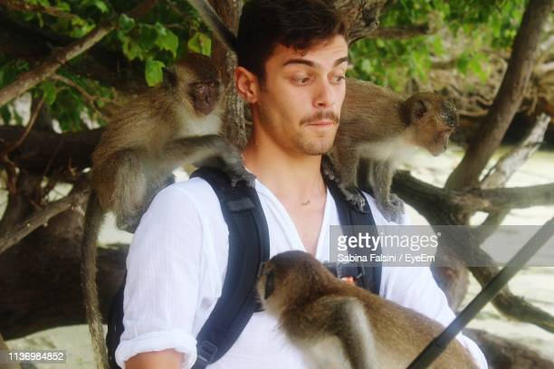 young man with monkeys against tree - monkey man stock pictures, royalty-free photos & images