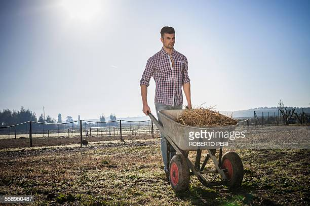 young man with wheelbarrow in field - wheelbarrow stock photos and pictures