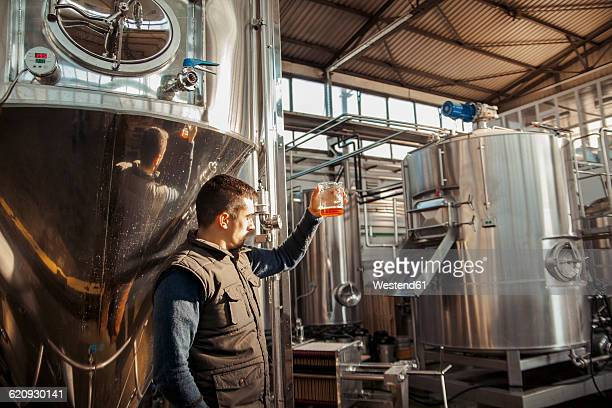 young man working in craft brewery - 醸造所 ストックフォトと画像