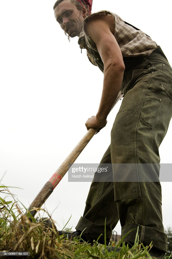 Young man working in field, low angle view : Stockfoto