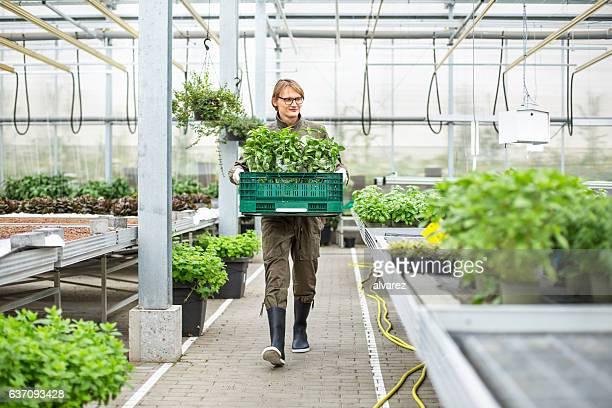 Young man working in garden center