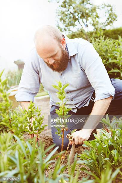 Young man working in garden, sowing plants
