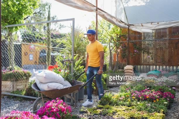 Young man working outdoors in garden shop