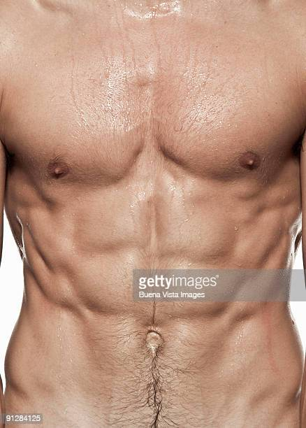 young man's naked torso. - male torso stock photos and pictures