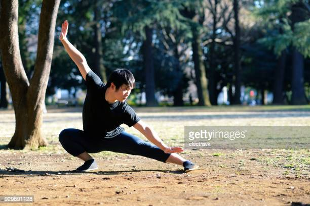 young martial arts enthusiast practicing outside - kung fu stock photos and pictures