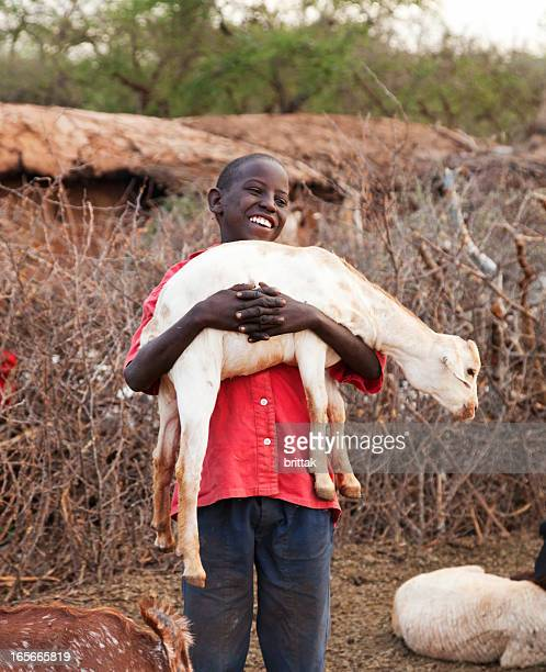 young masai boy with goats outside hut. - goats stock pictures, royalty-free photos & images