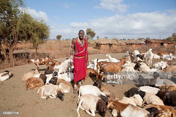 Young massai wih goats, village in background.