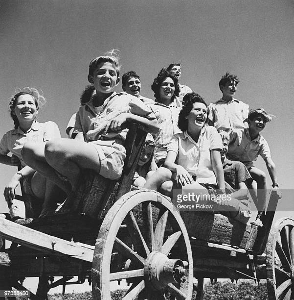 Young members of the Givat Brenner Kibbutz on their way to pick a tomato crop Israel circa 1950