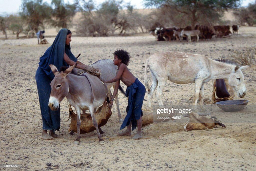 Kel Kummer Tuaregs : News Photo