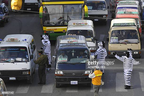 Young men in zebra costumes gesture toward the drivers passing over a pedestrian crossing at a congested avenue connecting with the capital in El...