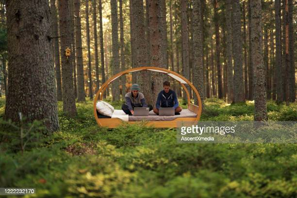 young men work on computers on bed in autumnal forest - harmony stock pictures, royalty-free photos & images