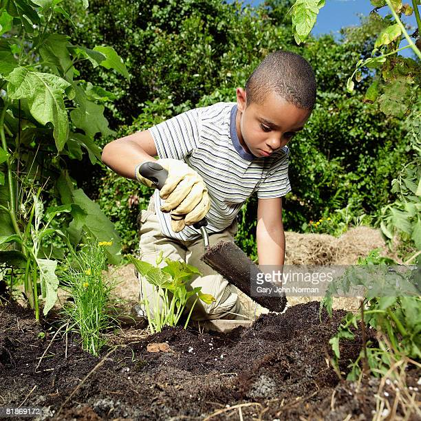 young mixed race boy enjoys the wonder on the garden digging with small trowel  - digging stock pictures, royalty-free photos & images