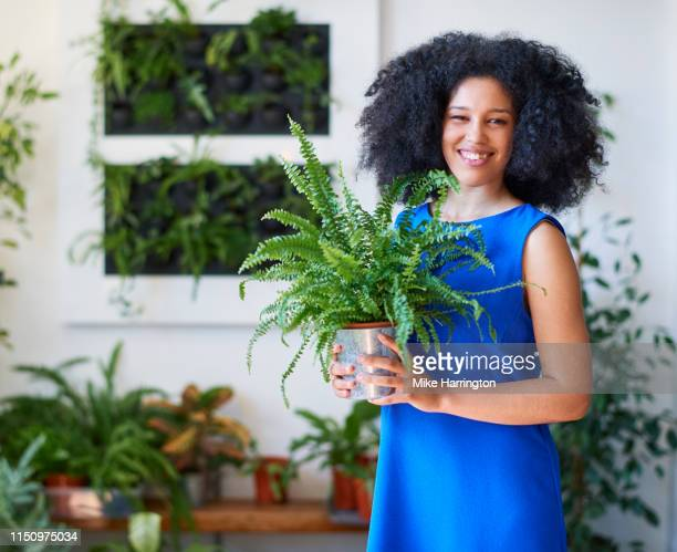 young mixed race female working in creative team holding plant in sustainable modern office. - sleeveless dress stock pictures, royalty-free photos & images