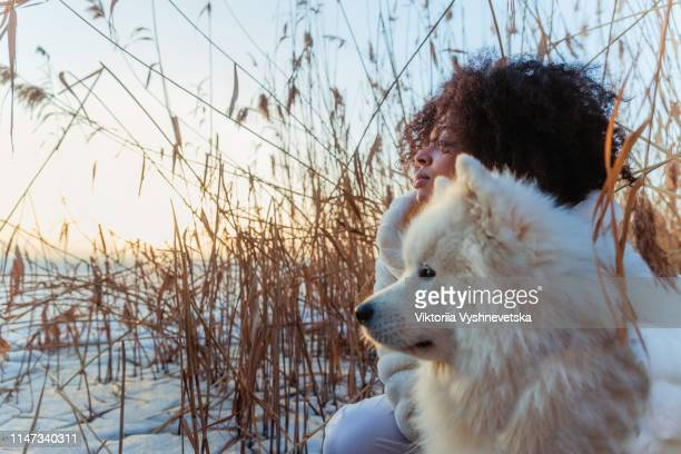 young mixed race girl with a big white dog samoyed walks and rests in the reeds on a frozen lake in ukraine - black hairy women stock pictures, royalty-free photos & images