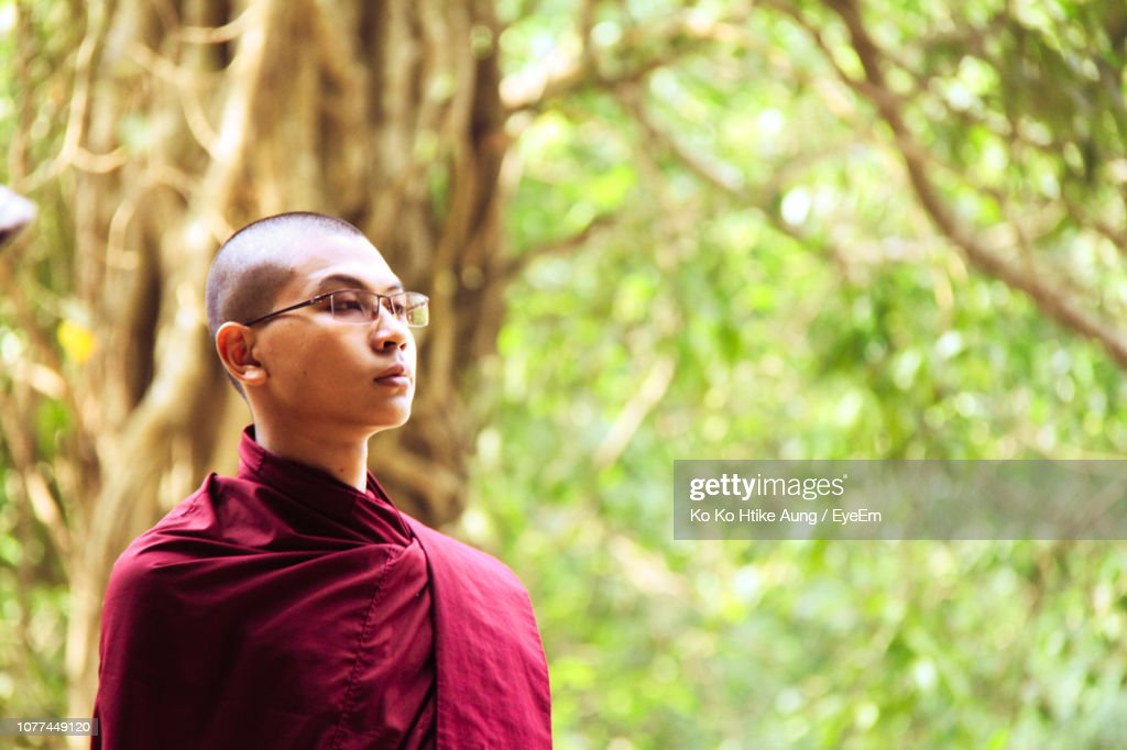 Young Monk Looking Away Against Trees : Stock Photo