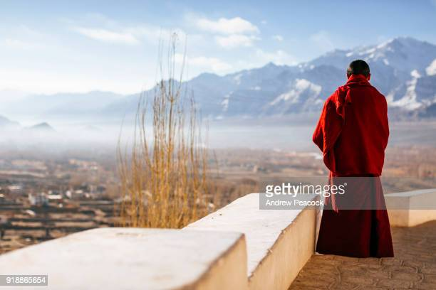 A young monk looks out to the Indus valley at Thikse monastery