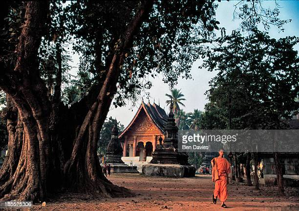 A young monk or novice strolls through the leafy grounds and gardens of Wat Aham in the ancient city of Luang Prabang in the North of Laos Built in...