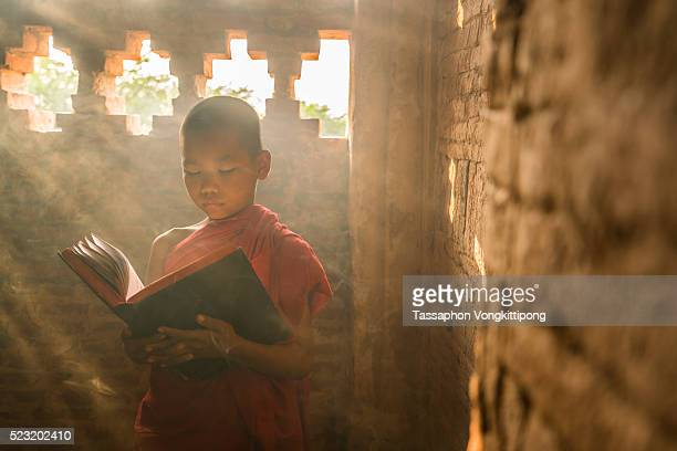 young monk standing reading scripture sunlight