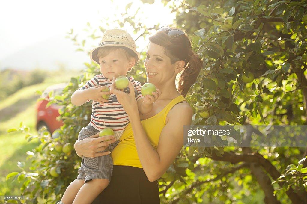 Giovane madre e Suo figlio di prendere mele : Foto stock