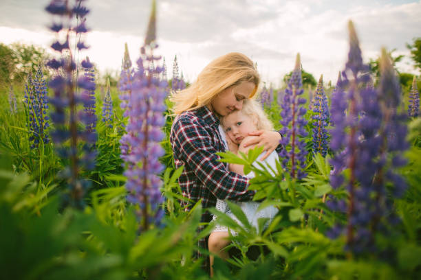 A young mother with a purple checkered shirt tightly and with great love hugs her little blonde kindergarten daughter in a white sundress sitting on a green and purple lupine field. The girl is in sorrow.
