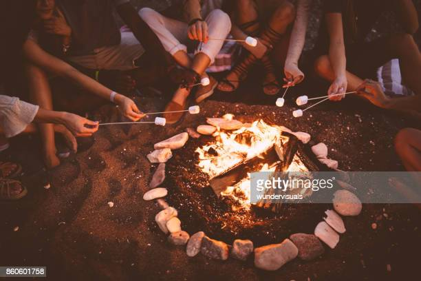 young multi-ethnic friends roasting marshmallows over campfire at beach party - bonfire stock photos and pictures