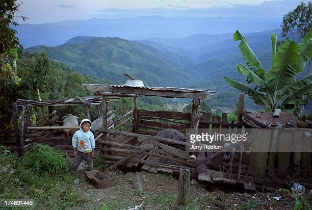 A young Naga boy finishes feeding the family hog with a view of the rolling hills of Nagaland in the background Naga villages are historically built...