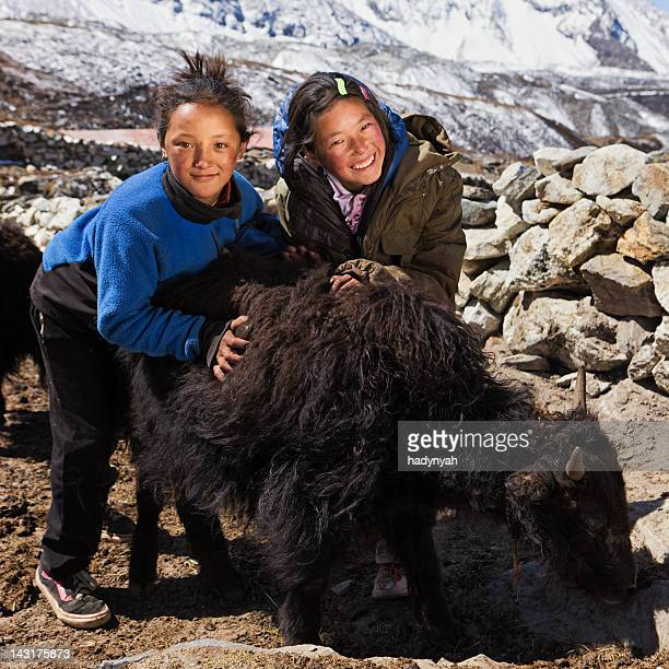 Young Nepali girls playing with yaks