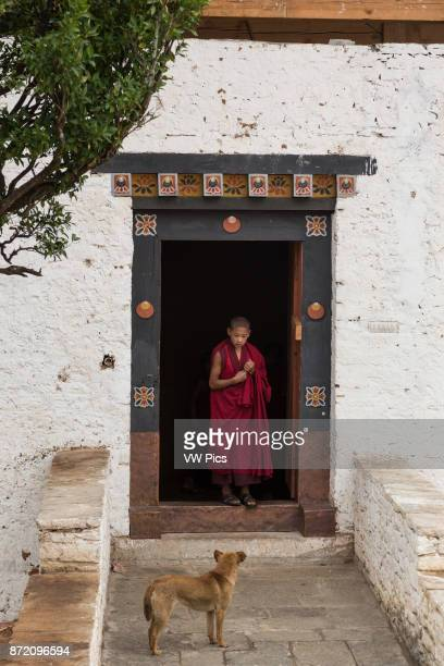 A young novice Buddhist monk and a stray dog look expectantly at each other in the Paro Dzong Paro Bhutan