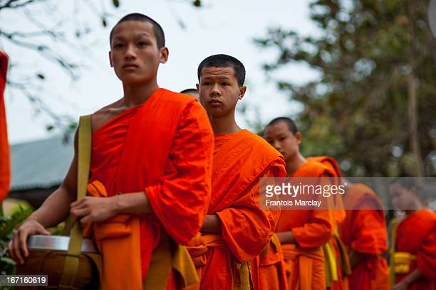Young novice Buddhist monks during Tak Bat, or the morning rice alms giving, in the streets of Luang Prabang. Monks walk down the streets in a single...
