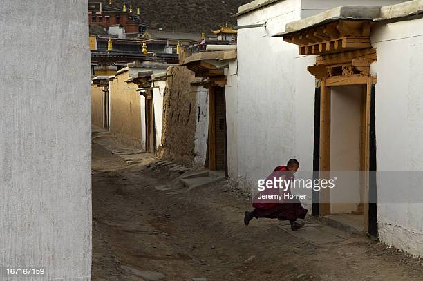 A young novice monk runs back to his quarters at Labrang Monastery Labrang Monastery is one of six monasteries of the Geluk school of Tibetan...