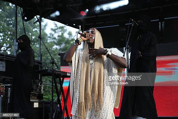 Young Paris performs onstage at Afropunk Fest at Commodore Barry Park on August 23 2015 in the Brooklyn borough of New York City