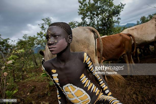 CONTENT] young pastor of the tribe surma with the body painted and their herd of cows