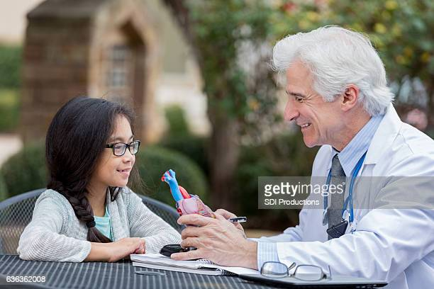 Young patient talks with doctor about the human heart