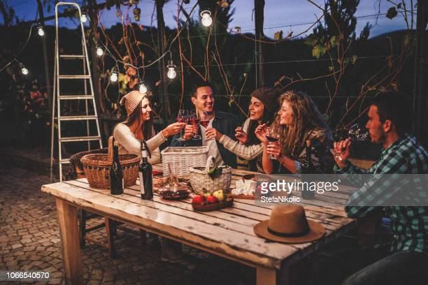 young people enjoying wine - barbecue social gathering stock pictures, royalty-free photos & images