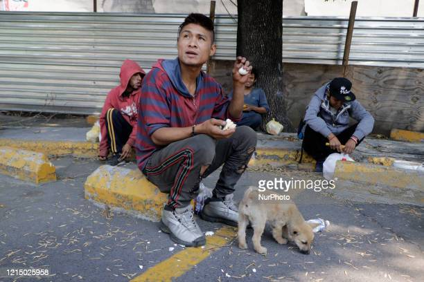 Young people from street towns sitting with their pet waiting for food delivery by the Sant'Egidio Community in the Taxqueña area in the face of the...